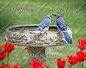 Personalized Custom Wedding Gift Spring Love Birds Blue Jays Birds at Birdbath Tulips Nature Lovebirds Wildlife Fine Art Photography Photo