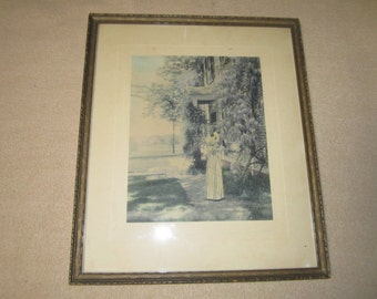 Antiquec1915 Framed Hand Colored WISTERIA Photograph Signed David Davidson