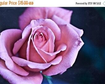 The Rose - 4x6 Fine Art Print