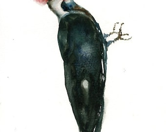 PILATED WOODPECKER Original watercolor painting 8x10inch(Vertical orientation)