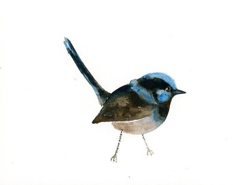 SUPERB FAIRY  WREN Original watercolor painting 10x8inch