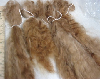 "Suri Alpaca Locks, 6-10"" Fawn Long Locks, Washed and Combed Locks, First Shearing Fine Locks, Doll Hair"