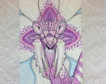 Flower Mantis original watercolor illustration ACEO ATC