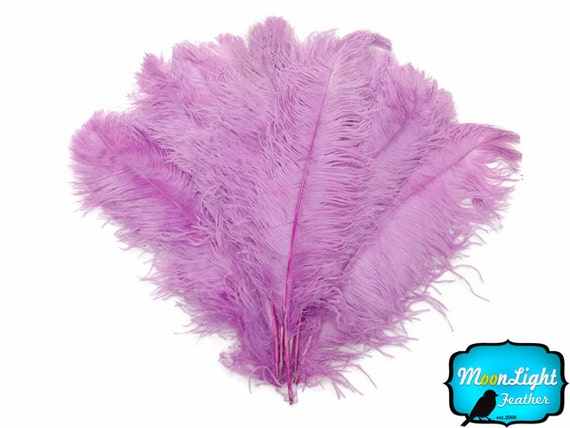 craft ideas with feathers lavender ostrich feathers 10 pieces 18 24 quot lavender 3974