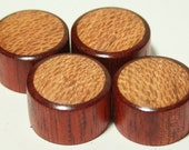 Set of 4 Bloodwood Guitar Knobs with Sycamore Inlay (7/8 dia x 9/16 height)