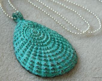 Sea Shell Pendant, Unique Beachy Necklace, Seyshelles Necklace