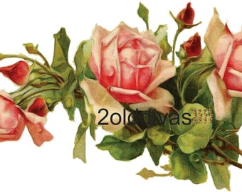 Pink Catherine Klein Shabby Roses 1910 Vintage Style Decals Antique Roses