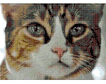 Cat Cross Stitch Pattern (Printable PDF) - Immediate Download from Etsy