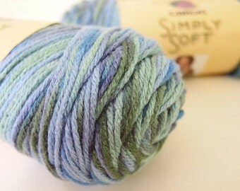 2 Skeins Simply Soft by Caron - Spring Brook