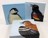 SALE! SPECIAL! - pick any three of the bird portraits in this section