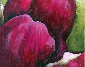 Magnolia Emerging