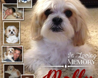 Dog/Cat, Pet Memorial Photo Collage/Life Page ~ Sympathy Gift ~ Custom & Personalized Photo Collage ~ You Chose the Size