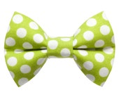 """Cat Bow Tie - """"The Chairman""""  - Lime Green and White Polka Dot"""