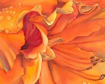 Framed Giclee of watercolor painting - archival print, azalea, orange, flower, floral, garden, gardener, gift, petals, bloom, blossom, art