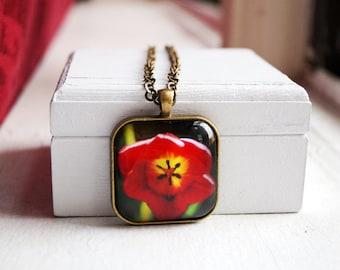 Tulip Flower Photo Jewelry, Flower Photo Necklace, Flower Photo Pendant, Tulip Photo Necklace
