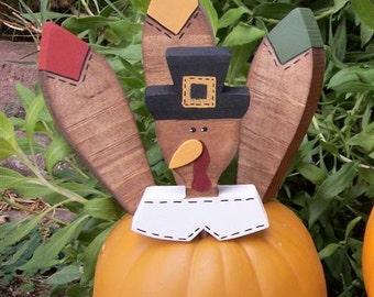 Small Turkey Pumpkin Pokes Thanksgiving Decor Pumpkin Parts Pilgrim Turkey Kit