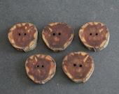 Cedar Wood Buttons, Purple Buttons, Set of 5