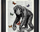 BOGO Sale Monkey With Butteflies Art Print with A HHP Original with HHP Signature Butterflies Wall Decor Dictionary Print Dictionary Prints