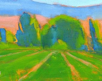 Boise Idaho- Original Landscape Oil Painting