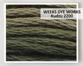 KUDZU 2200  : Weeks Dye Works WDW hand-dyed embroidery floss cross stitch thread at thecottageneedle.com