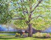Fine Art Print- Senior Oak, Vintage Judson College, Marion Alabama