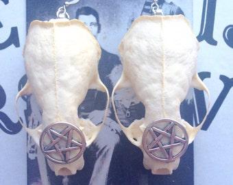 Mink Skull Earrings, Real bone Jewelry, animal bone earrings,taxidermy Jewelry, pentagrams, wicca, wiccan, mink bones, bone earrings