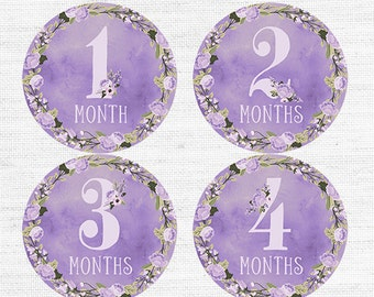 First Year Baby Month Signs Monthly Photo Prop PRINTABLE