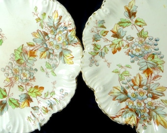 SALE! Victorian Cabinet Plates, Pair Bodley & Son Hawthorn May Blossom Hand Coloured Polychrome Brown Transferware Aesthetic Plates 1892