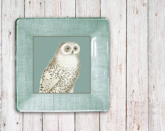 Owl decor decorative tray antique print snowy owl wall plates wall art decoupage plate decorative plate hanging plate white decor teal decor