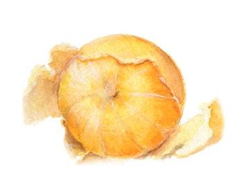 Watercolor Orange, Orange Peel Print, Orange Painting, Citus Print