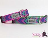 Purple, Pink, Green Neon Santa Fe Glitter Dog Collar