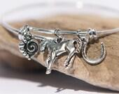 Horse Jewelry Bracelet, Horse Lover Bracelet, Equestrian, Horseshoe Jewelry, Cowgirl, Horse Jewelry, Gift for Horse Lover