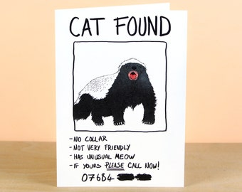 Funny Cat Found (mistaken Identity) Greetings Card