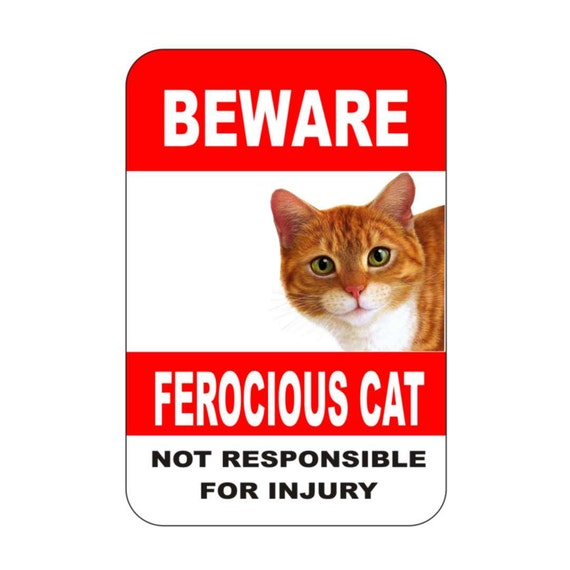 cat sign, ferocious cat, cat warning sign, animal sign,funny sign, metal sign, yard sign, driveway sign, house sign, garage sign