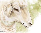 Original Sheep Watercolor Painting, Barnyard Art