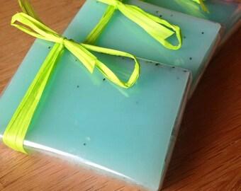 Pack of 3 Aloe Vera Soaps