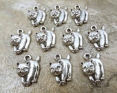 10 Pewter Chow Chow Dog Charms  - 5494