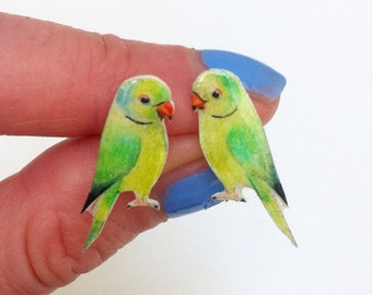 Hand drawn Parakeet earrings. Bird Earrings. Parrot ear studs