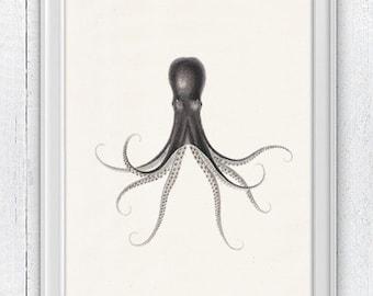 Octopus nº32 sea poster print- Octopus Wall Art PRINT- octopus house decor- illustration art print- Octopus print house decor gift SPOJ057