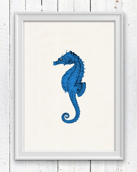 Blue seahorse - sea life print - Seaside wall art  ,  bathroom wall decoration SPA050