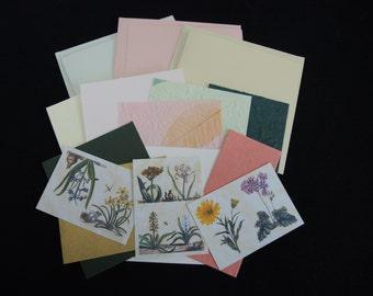SALE Spring Botanical Bulbs- 3 blank cards kit -OOAK ready to ship