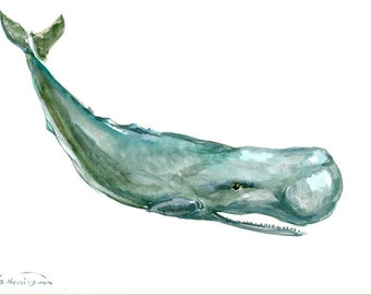 Sperm Whale , 15 X 11 in, original watercolor painting, whale art, sea animal art, seaworld