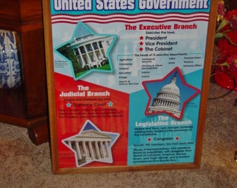 united states government custom framed print solid rustic cedar oak finish wall hanging display deep profile