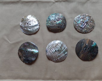 ABALONE BUTTONS - 60MM - 2 1/2""
