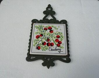 Cast Iron Trivet Signed Rebba Made in Japan Cranberry Design