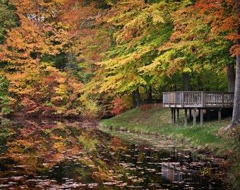 Fall in Indiana