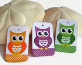 Owl gift tags in rainbow colors, favor tags set of 6 for gift wrapping