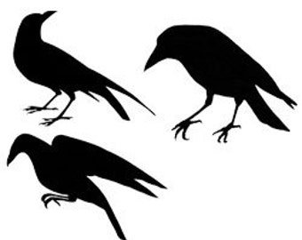 Set of Three Unmounted Rubber Stamps -  Crow Silhouettes