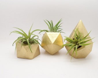 Mini gold geometric planter gift set, small air plant holders, modern floral, desktop planter