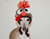 Turkey Hat for a Dog or Cat - Thanksgiving Hat